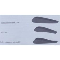 Maîtrise du paramoteur (Siecklucki)