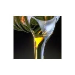 Huile Motul 100% synthèse au litre